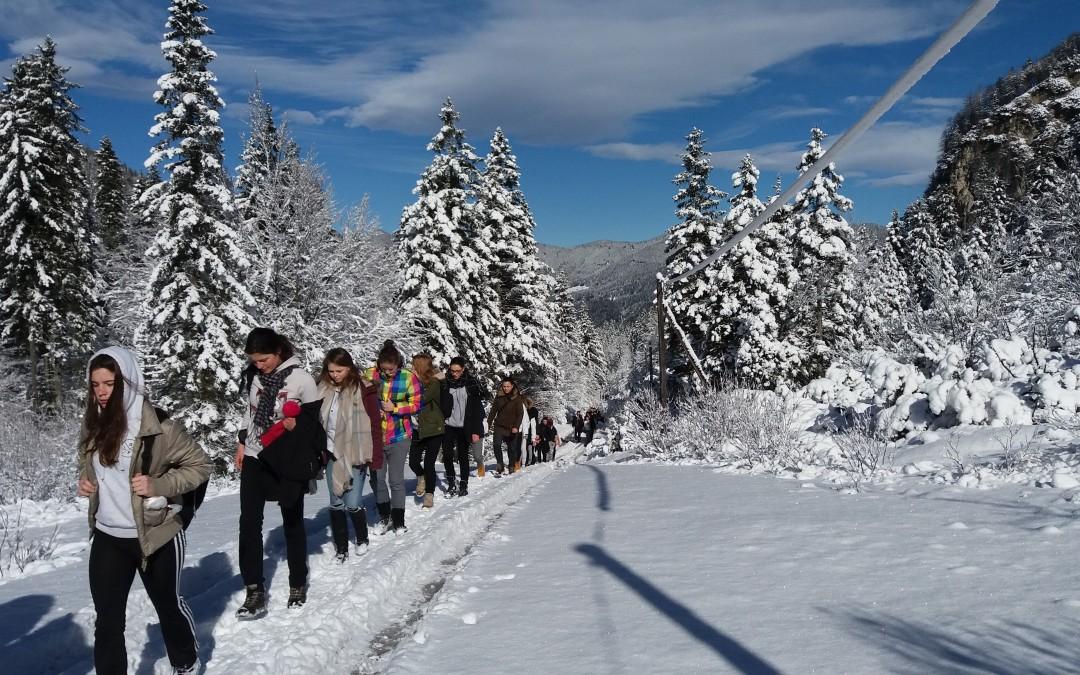 Odhodi na zimski športni dan za 3. in 4. letnik