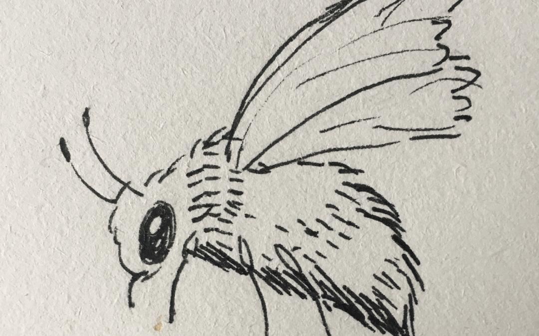 Vabilo k ogledu razstave risb čebel