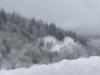 sneg-nika-sircelj-1-f
